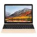 Store apple macbook gold keyboard 2