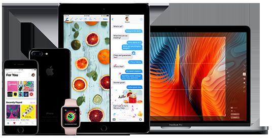 Apple servis zamjenski program